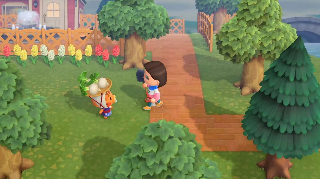 Can You Plant Turnips In Animal Crossing
